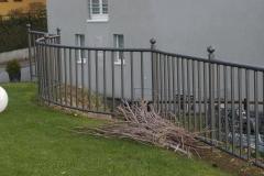Arealabschlüsse Zäune und Geländer 5